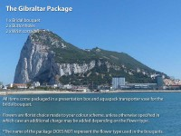The Gibraltar Package